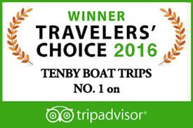 Tenby Boat Trips Tripadvisor
